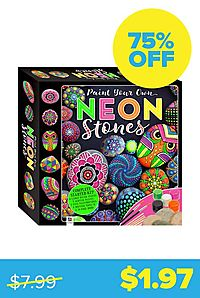 Neon Paint-Your-Own Rocks Kit